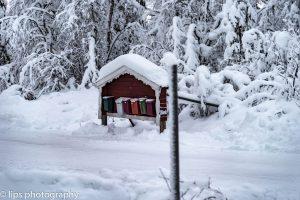 Finnland_2015 (20)
