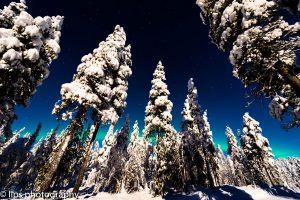 Finnland_2015 (28)