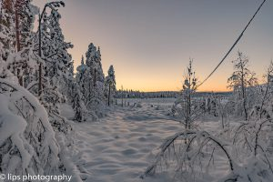 Finnland_2015 (39)